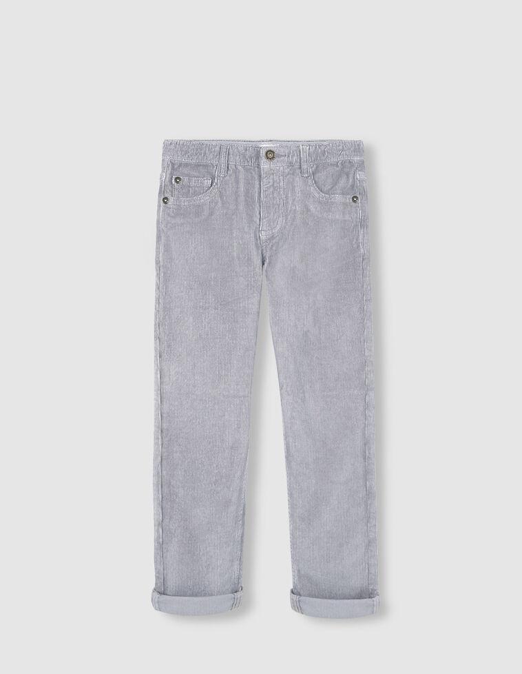 Calças Bombazina cinzenta